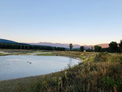 Bonners Ferry Residential Lots & Land For Sale: NNA Parcel 2 Waterfront Lane