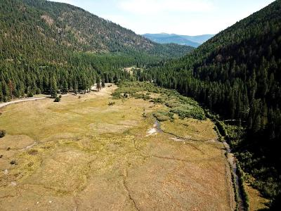 Bonners Ferry Residential Lots & Land For Sale: 7600 Meadow Creek Rd