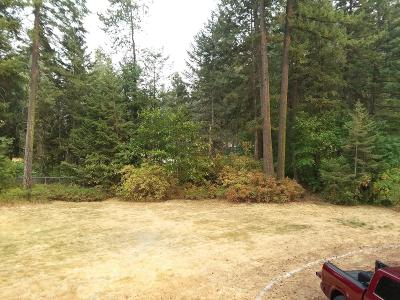 Rathdrum Residential Lots & Land For Sale: 20944 N Cochran Ln