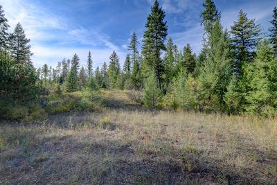 Spirit Lake Residential Lots & Land For Sale: NNA Lot152 N Priest River Dr