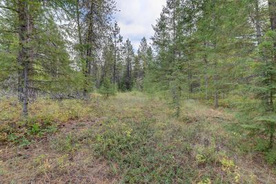 Spirit Lake Residential Lots & Land For Sale: NNA Lot 48 N Hayden Dr