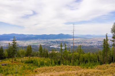Post Falls Residential Lots & Land For Sale: 1921 S Mellick Rd