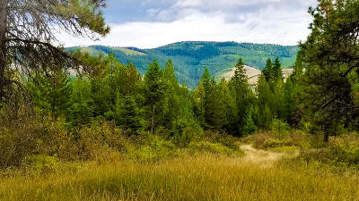 Benewah County Residential Lots & Land For Sale: NNA Glacier Dr