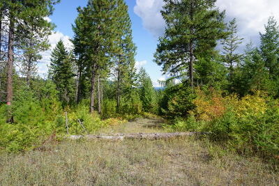 Spirit Lake Residential Lots & Land For Sale: NNA Beare Rd