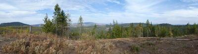 Residential Lots & Land For Sale: Alder Creek Loop Tract 30