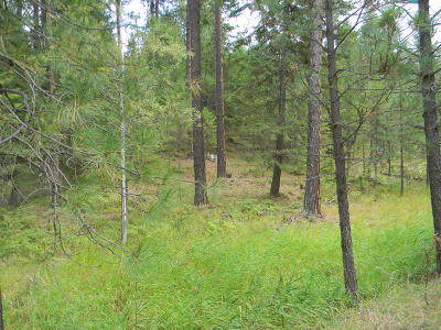 Benewah County Residential Lots & Land For Sale: KNA Ragans Addition Lots 55 & 56