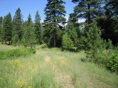 Rathdrum Residential Lots & Land For Sale: L2B3 Roanoak Rd