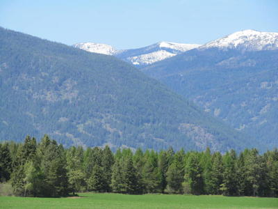 Bonners Ferry Residential Lots & Land For Sale: 1514 Fawn Ln