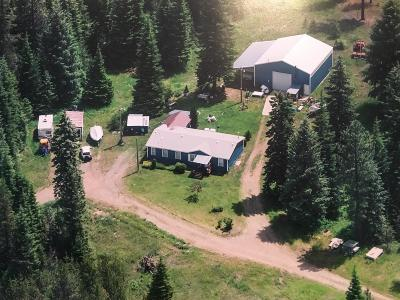Rathdrum Mobile/Manufactured For Sale: 5228 W Graf Rd