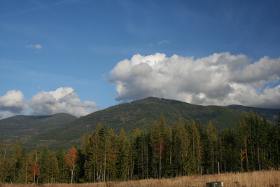 Sandpoint ID Residential Lots & Land For Sale: $169,000