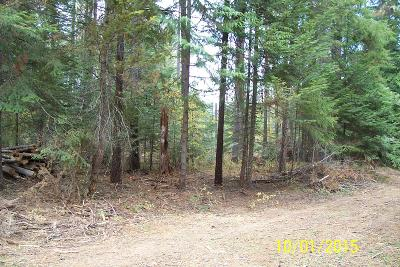 Priest River Residential Lots & Land For Sale: NNN Terry Trail
