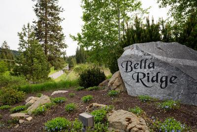 Coeur D'alene Residential Lots & Land For Sale: Lot 5 Block 3 Bella Ridge