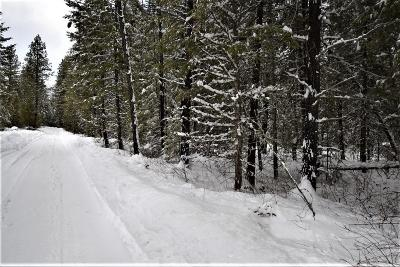 Priest River Residential Lots & Land For Sale: 181 Moose Creek Rd