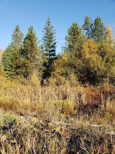 Priest River Residential Lots & Land For Sale: Hwy 2