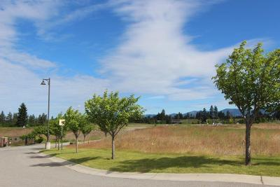 Post Falls Residential Lots & Land For Sale: L4B1 Post Falls Landing