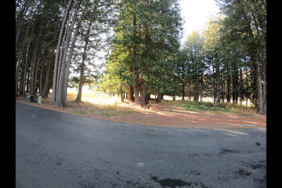 Sandpoint Residential Lots & Land For Sale: nna N Idaho Club Drive