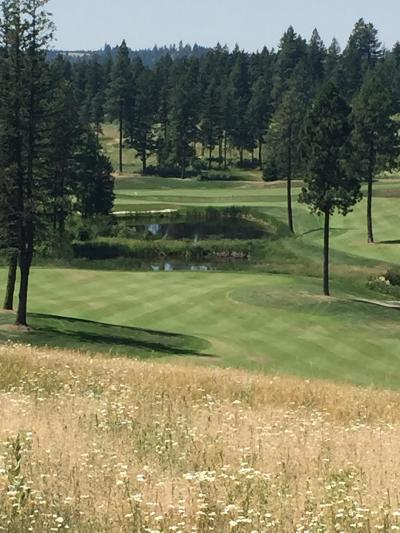 Coeur D'alene Residential Lots & Land For Sale: W. Dunite Court