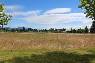 Hauser, Post Falls Residential Lots & Land For Sale: L1B1 N Post Falls Landing