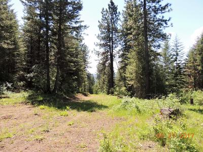 Benewah County Residential Lots & Land For Sale: #6 Cheyenne