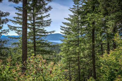 Coeur D'alene Residential Lots & Land For Sale: NKA S Outlaw Canyon Rd