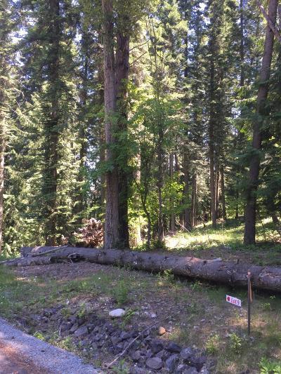 Priest River Residential Lots & Land For Sale: Lot 9 Sailor Ln