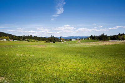 Coeur D'alene Residential Lots & Land For Sale: NNA Meadowbrook Road