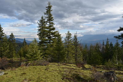 Bonners Ferry Residential Lots & Land For Sale: NNA Grizzly Gap Rd B