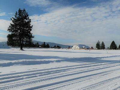 Post Falls Residential Lots & Land For Sale: 2990 N Callary St