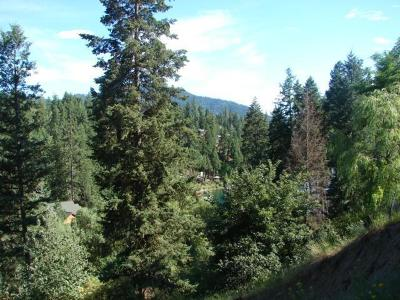 Hayden Residential Lots & Land For Sale: 10900 N Lakeview Dr