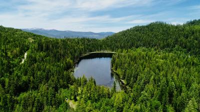 Sandpoint Residential Lots & Land For Sale: 2455 Bloom Lake Rd