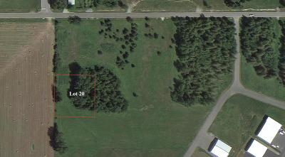 Sandpoint Residential Lots & Land For Sale: Lot 20 Beaver Ave