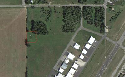 Sandpoint Residential Lots & Land For Sale: Lot 21 Beaver Ave