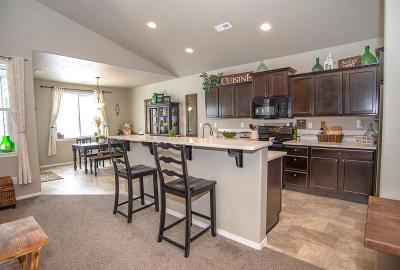 Hayden Single Family Home For Sale: 13385 N Telluride Loop