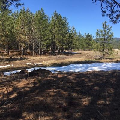 Coeur D'alene Residential Lots & Land For Sale: 2369 N Bignall Dr