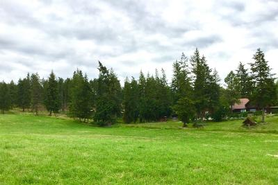 Bonners Ferry Single Family Home For Sale: 897 Wallen Rd
