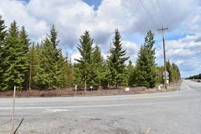 Rathdrum Residential Lots & Land For Sale: NNA Old Highway 95 Lt4blk1