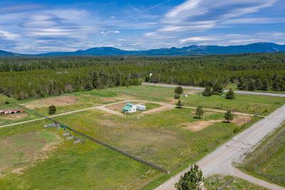 Bonner County, Kootenai County Single Family Home For Sale: 6823 E Trinity Ln