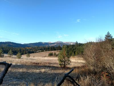 Coeur D'alene Residential Lots & Land For Sale: NNA Greensferry