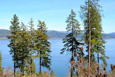 Coeur D'alene Residential Lots & Land For Sale: S Isaac Stevens