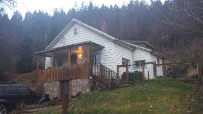 Shoshone County Single Family Home For Sale: 817 W Park Ave