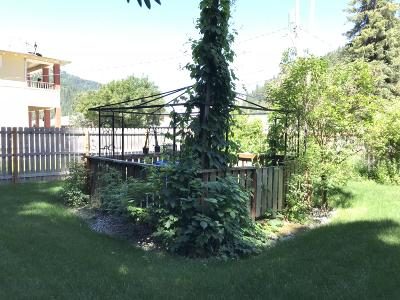 Shoshone County Single Family Home For Sale: 824 Residence Street