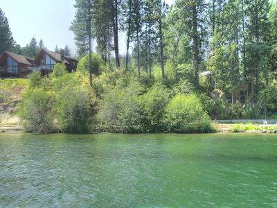 Coeur D'alene Residential Lots & Land For Sale: 4824 W Phish Lane