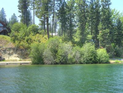 Coeur D'alene Residential Lots & Land For Sale: 4826 W Phish Lane