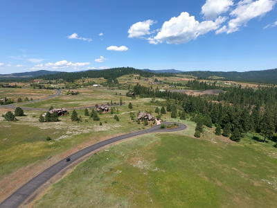 Coeur D'alene Residential Lots & Land For Sale: L256 S Gypsum Ct