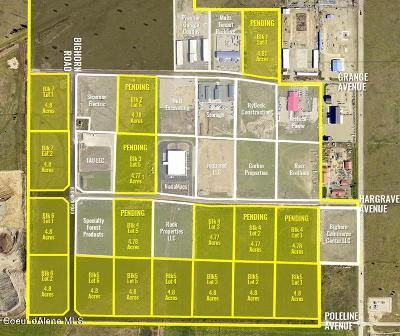 Post Falls Residential Lots & Land For Sale: L3B4 Hargrave Ave