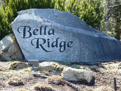 Coeur D'alene Residential Lots & Land For Sale: Bella Ridge Dr L10 B3