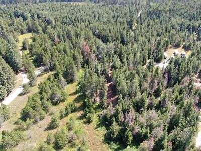 Priest Lake Residential Lots & Land For Sale: 141 Chase Lake Rd