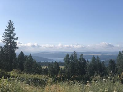 Coeur D'alene Residential Lots & Land For Sale: 17293 S Graysons Way