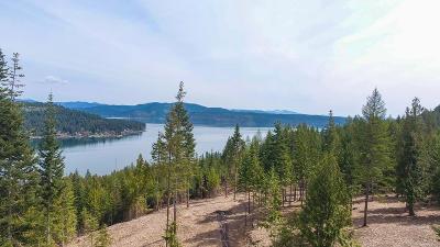 Coeur D'alene Residential Lots & Land For Sale: Trekker Woods