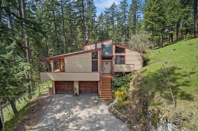Coeur D'alene, Dalton Gardens Single Family Home For Sale: 3051 N Country Ln